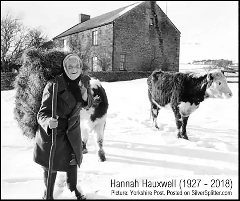 Memories of Hannah Hauxwell, picture from Yorkshire Post, posted on SilverSplitter.com